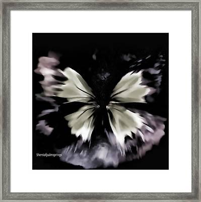 Butterfly Art  Fly Free Little Butterfly Framed Print