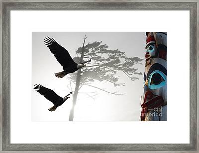 Fly Like An Eagle  Framed Print by Bob Christopher