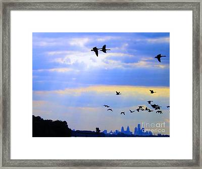 Fly Like The Wind Framed Print by Robyn King