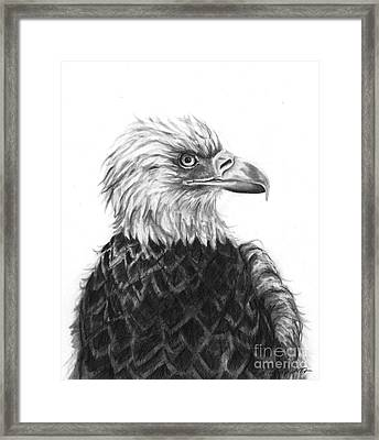 Framed Print featuring the drawing Fly On Free Wings by J Ferwerda