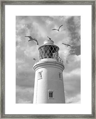 Fly Past - Seagulls Round Southwold Lighthouse In Black And White Framed Print