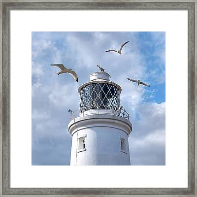 Fly Past - Seagulls Round Southwold Lighthouse - Square Framed Print by Gill Billington