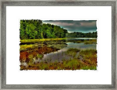 Fly Pond In The Summer Framed Print by David Patterson