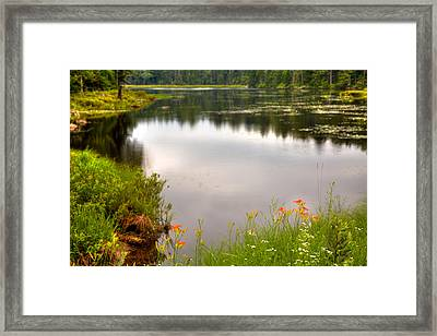 Fly Pond - Rondaxe Road Framed Print by David Patterson