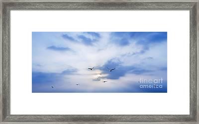 Fly To Freedom Framed Print by Setsiri Silapasuwanchai