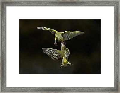 Flying Attack! Framed Print