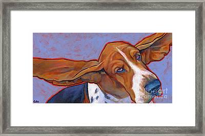 Flying Basset Hound Framed Print by Lynn Culp
