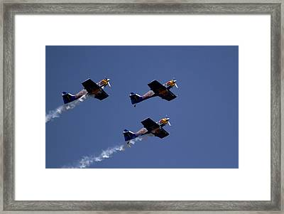 Framed Print featuring the photograph Flying Bulls by Ramabhadran Thirupattur