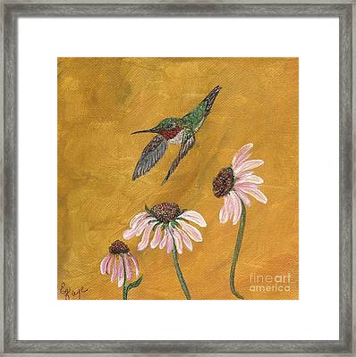 Flying By Framed Print