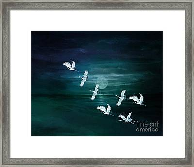 Flying By The Moon Bay Framed Print