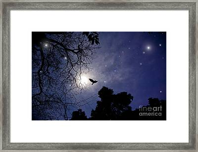 Flying By The Moon Framed Print