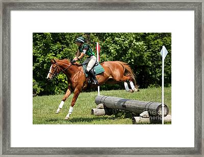 Flying Chestnut Framed Print