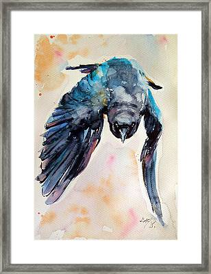 Flying Crow Framed Print