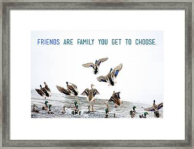 Flying Ducks And A Friends Quote Framed Print