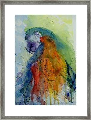 Flying Feathers Framed Print