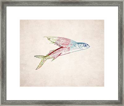 Flying Fish Illustration Framed Print by World Art Prints And Designs
