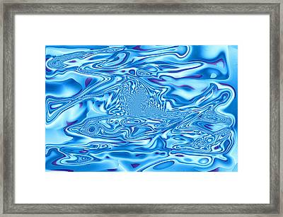 Flying Fish Framed Print by Tom Druin