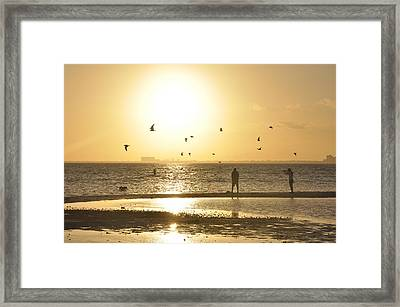 Flying For The Sun Framed Print