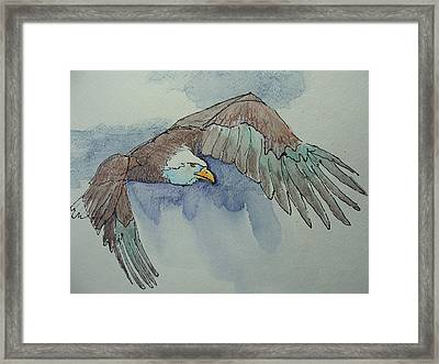 Flying Free Framed Print by Judy Fischer Walton