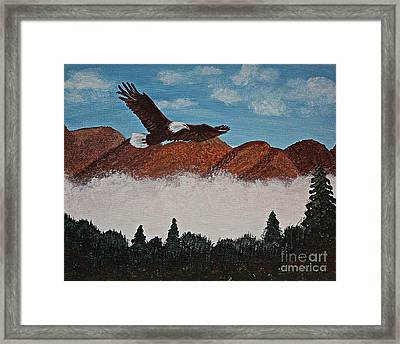 Flying High Framed Print by Barbara Griffin