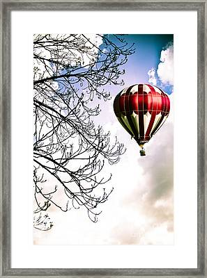 Flying High Framed Print by Jan Bickerton
