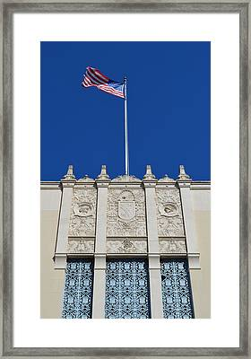 Flying High  Framed Print by Shawn Marlow