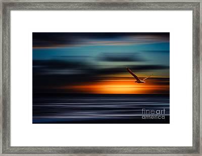 Flying Into The Sunset Framed Print