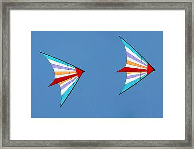 Flying Kites Into The Wind Framed Print by Christine Till