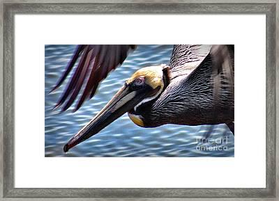 Flying Low 2 Framed Print