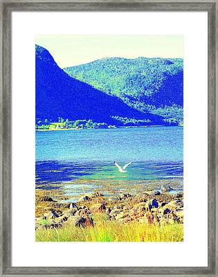 Seagull Flying Low, Mountains Standing Tall  Framed Print by Hilde Widerberg