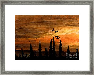Flying Low Framed Print by R Kyllo