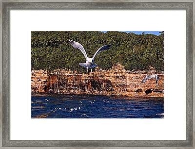 Flying Over The Rocks Framed Print by Cheryl Cencich