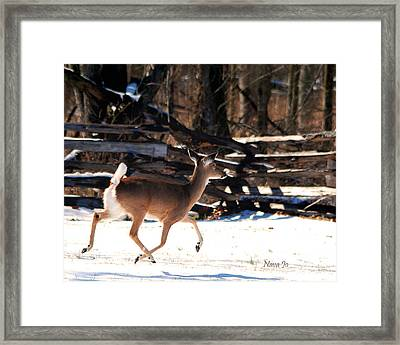 Framed Print featuring the photograph Flying Over The Snow by Nava Thompson
