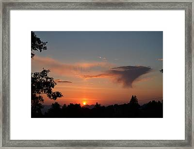 Flying Rabbit Framed Print