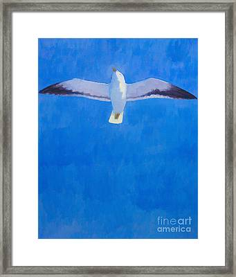Flying Seagull Framed Print by Lutz Baar