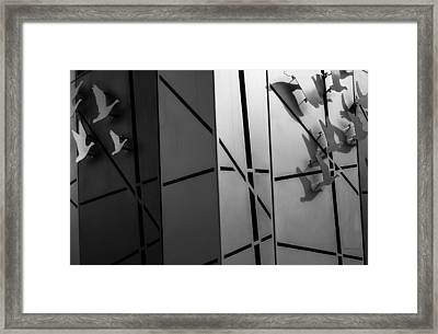 Flying South - Wildlife Abstract Framed Print