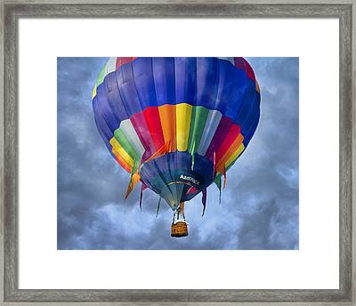 Flying The Coop Framed Print by Betsy Knapp