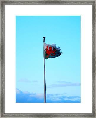 Flying The Flag Framed Print
