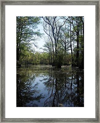 Flying Through The Mirror Framed Print