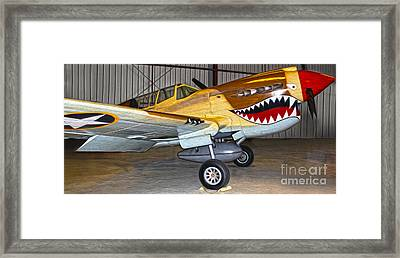 Flying Tiger - 02 Framed Print by Gregory Dyer