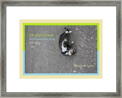 Flying With Sose From The Park Altered Cats Cyprus Framed Print
