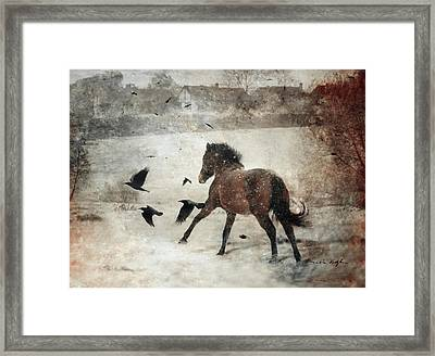 Flying With The Crows Framed Print by Dorota Kudyba