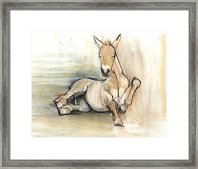 Foal, 2012, Charcoal Conté And Pastel On Paper Framed Print