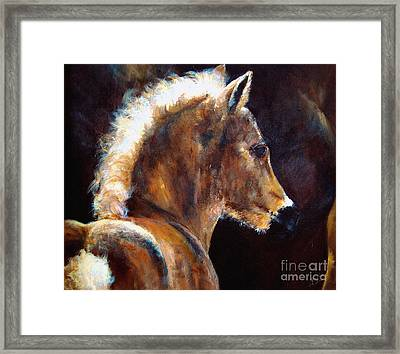 Foal Chestnut Filly Painting Framed Print