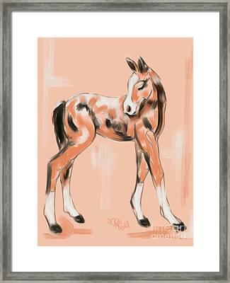 Foal Peach Framed Print by Go Van Kampen