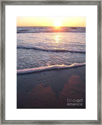 Foamy Shore Framed Print by Sean Hughes