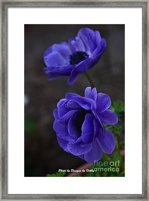 Focused Framed Print by Debby Pueschel