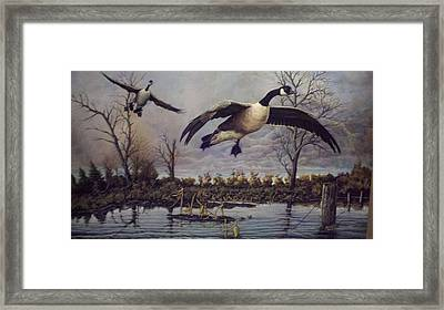 Foever Together Framed Print by Dan Parsons