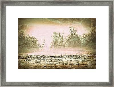 Fog Abstract 1 Framed Print by Marty Koch