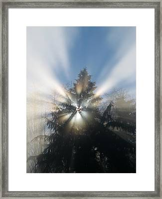 Fog And Light Rays Framed Print